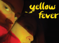 yellow-fever-new