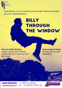 Billy Through the Window A3